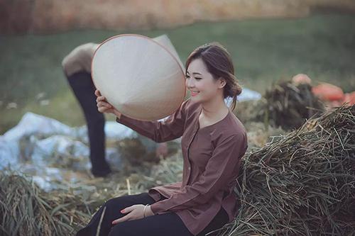 Chụp trong mùa thu hoạch lúa ở làng quê miền bắc